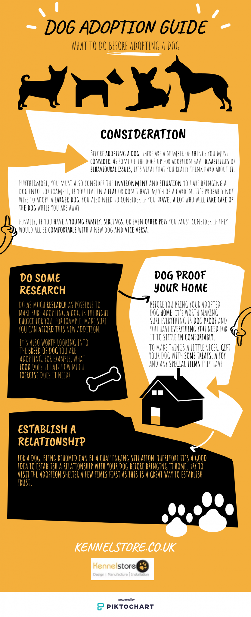After-You-Adopt-Infographic