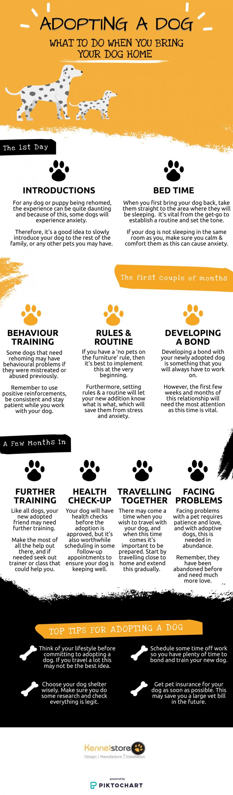 Adopting-A-Dog-Info