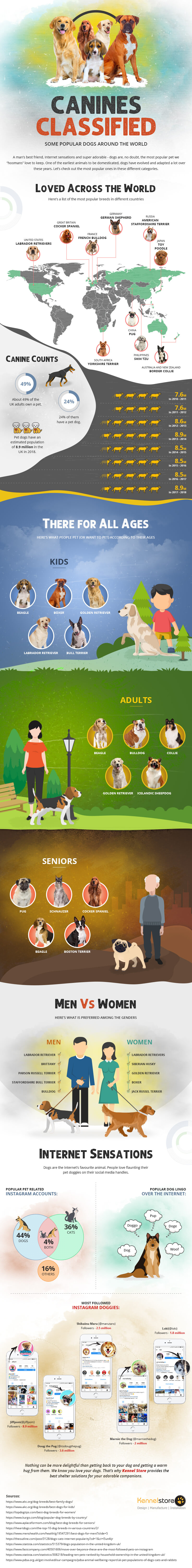 Dog infographic titled CANINES CLASSIFIED