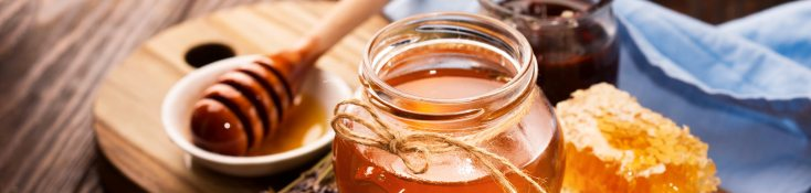 Honey, in the right amounts, can be very effective for helping with kennel cough.