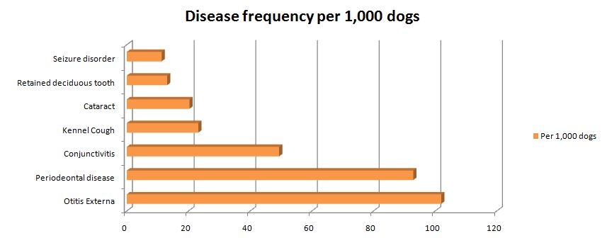Data relating to disease prevalence for pet dogs in the UK.